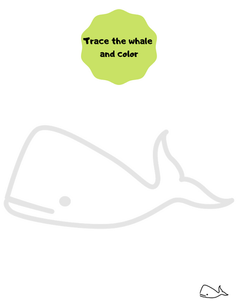 Trace the whale