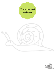 Trace the snail