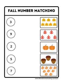 Free Fall Numbers Matching