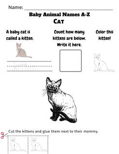 Baby Animal Names Worksheet (A-Z)