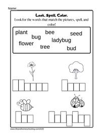 Spelling Activity Printable