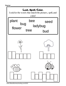 Spelling Activity Printable