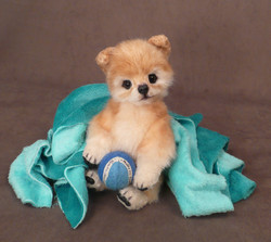 "Muffy the Pomeranian 7"""