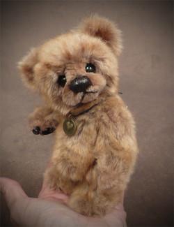 Snooks the Baby Palm Bear Cub