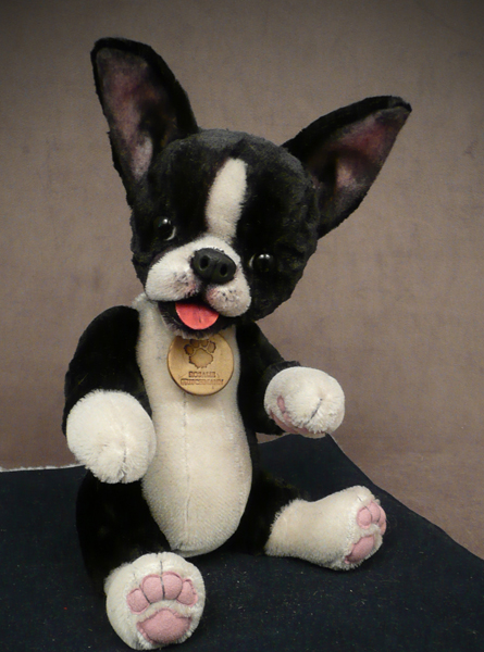 Otto Boston Terrier