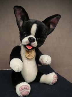 Otto Boston Terrier