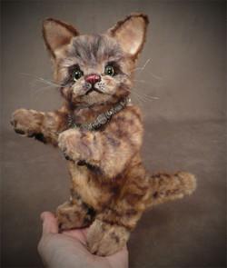 Scratch the Palm Kitten