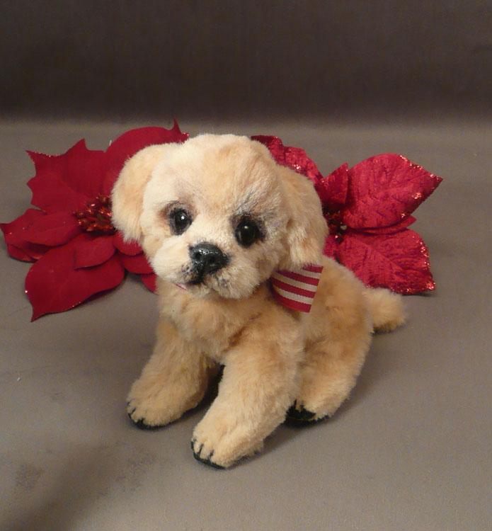 Gracie the Golden Retriever Puppy