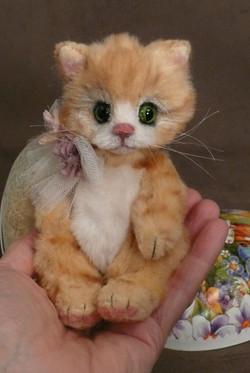 Nugget the baby No No kitten