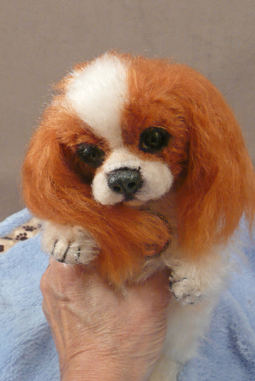 Buttercup the Cavalier