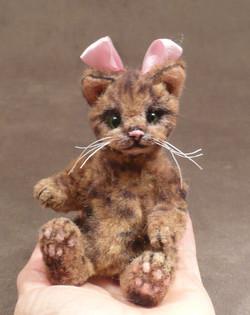 NoNo Alley Cat