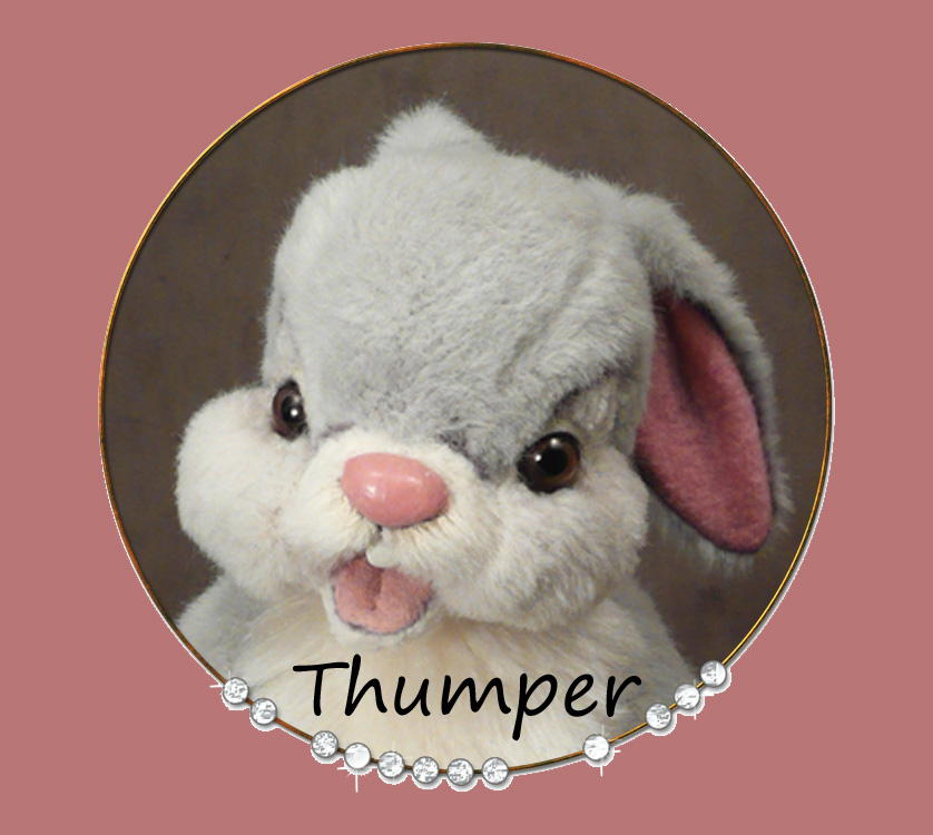 Thumper the Bunny