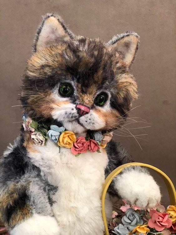 Robin the Spring Kitten