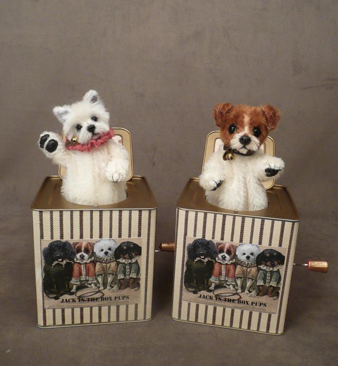 Westie Jack Russell Terrier