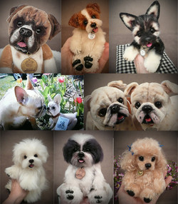 custom order dogs