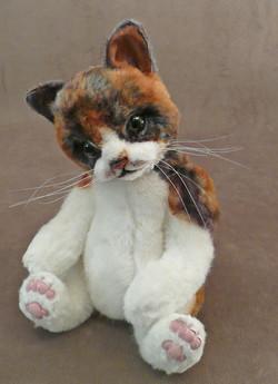 Brynn the Calico Palm Kitten