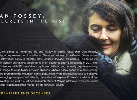 DIAN FOSSEY: SECRETS IN THE MIST - TITLES / MOTION DESIGN