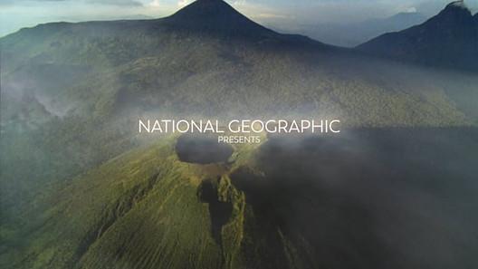 Dian Fossey: Secrets in the Mist - Documentary
