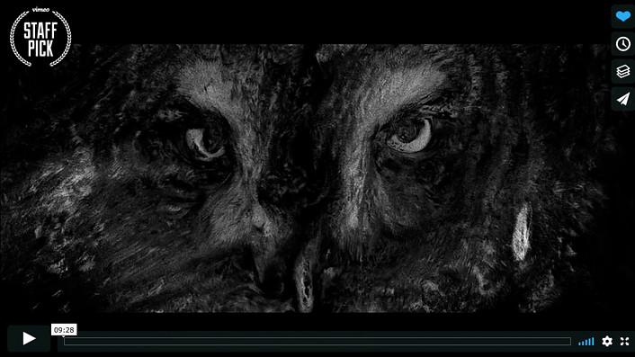 Donoma - Short Film