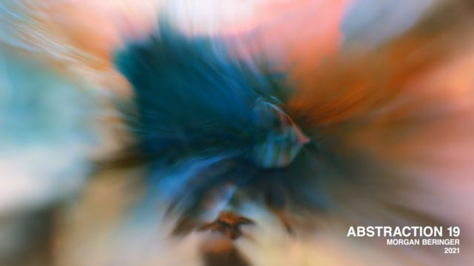 Abstraction 19 - Selection From