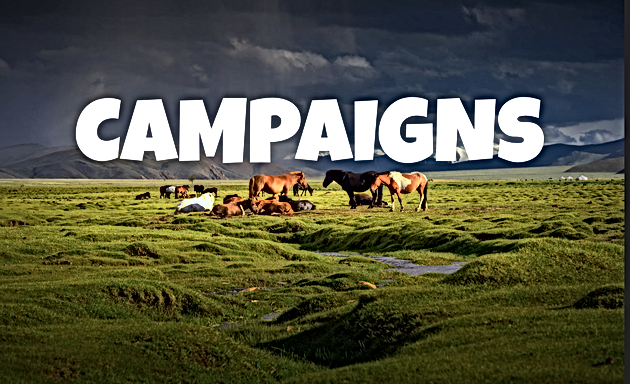 CAMPAIGNS (WORKING TITLE)