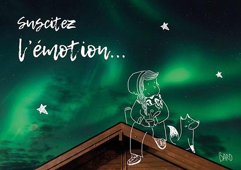 Illustration sur une photo d'aurore boréale, qui représente une personne contempative et un renard dans la nuit, avec ds étoiles. Sucitez l'émotion.