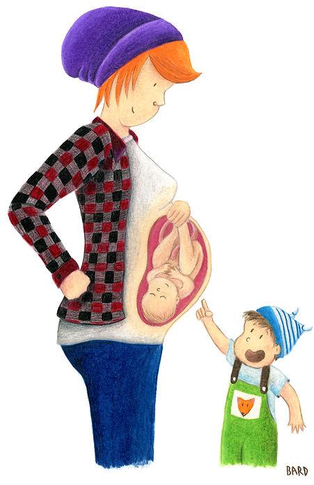 Illustration d'une femme enceinte où l'on peut voir son bébé dans son ventre, afin d'expliquer la grossesse au frère ou à la soeur du bébé