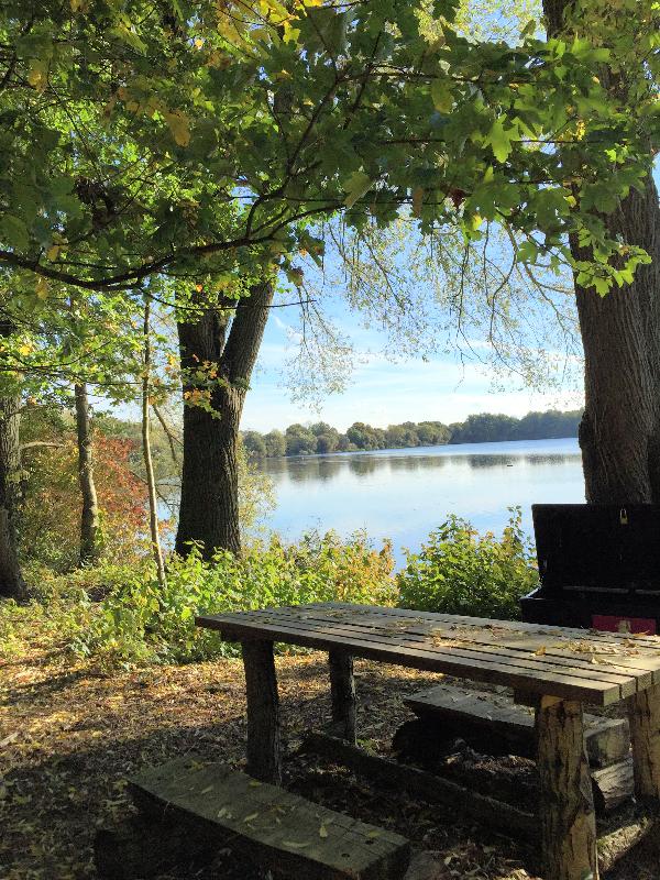 Freeth Mere picnic spot