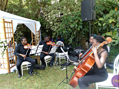 Wedding instrumentalists.