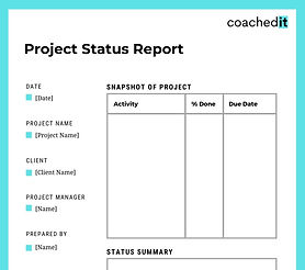 Project management tool: project status report for coaches and consultants