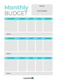 Monthly Financial Budget Planning & Reflection.jpg
