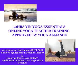Special Offer: YA Online Yin Yoga Teacher Training