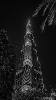 SW - Dubai (5).jpg