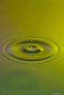 Drops (5).jpg