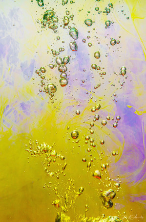 Splash Chaos (12).jpg