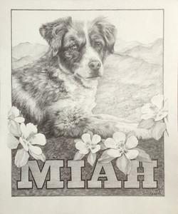 Miah for Liz