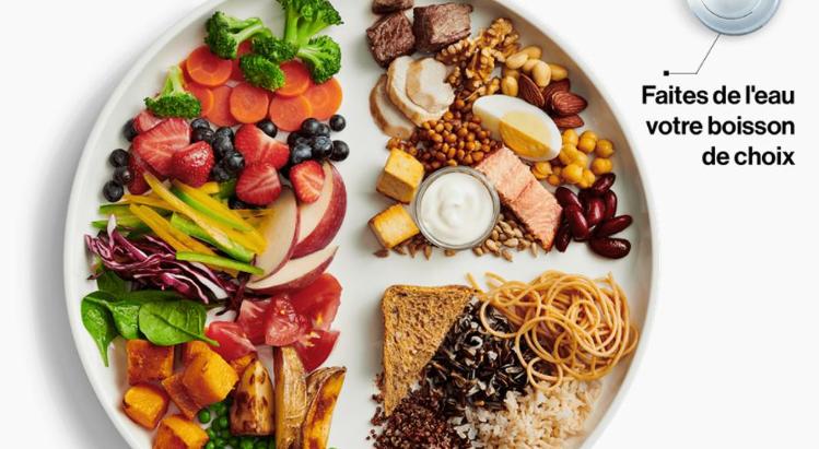 Tout savoir sur l'équilibre alimentaire