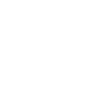 Icon Home Inspection white.png