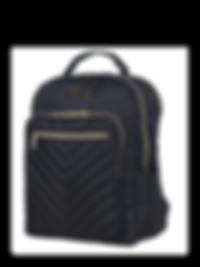 designer-computer-backpack-brilliantista