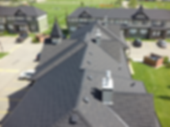 Harvest Shake in Black Condos.png