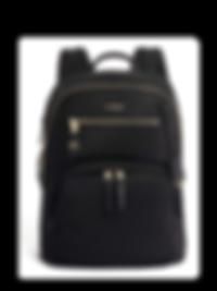 tumi-computer-backpack-bag-brilliantista