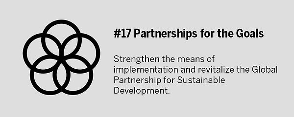 SDG-17.jpg