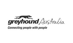 greyhound-australia