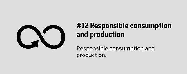 SDG-12.jpg
