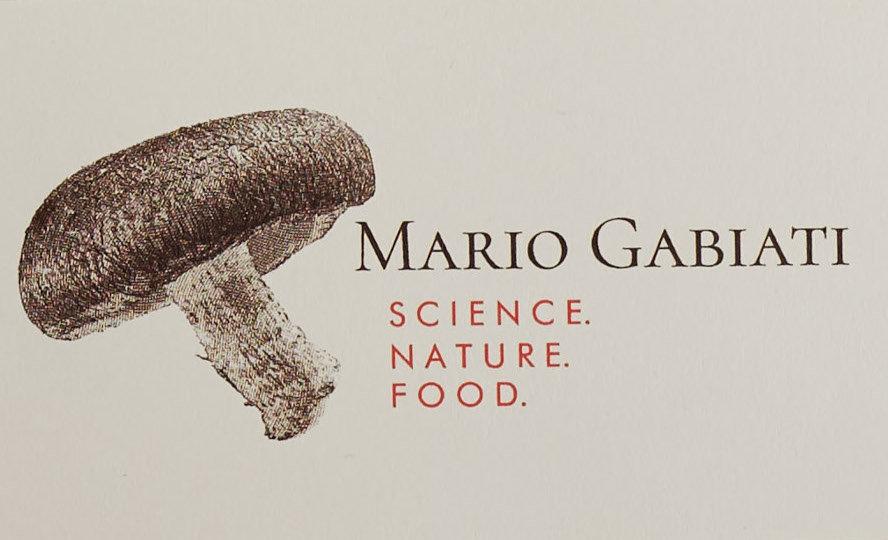 Mario Logo.jpg