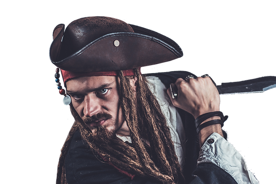 pirate-2752397.png
