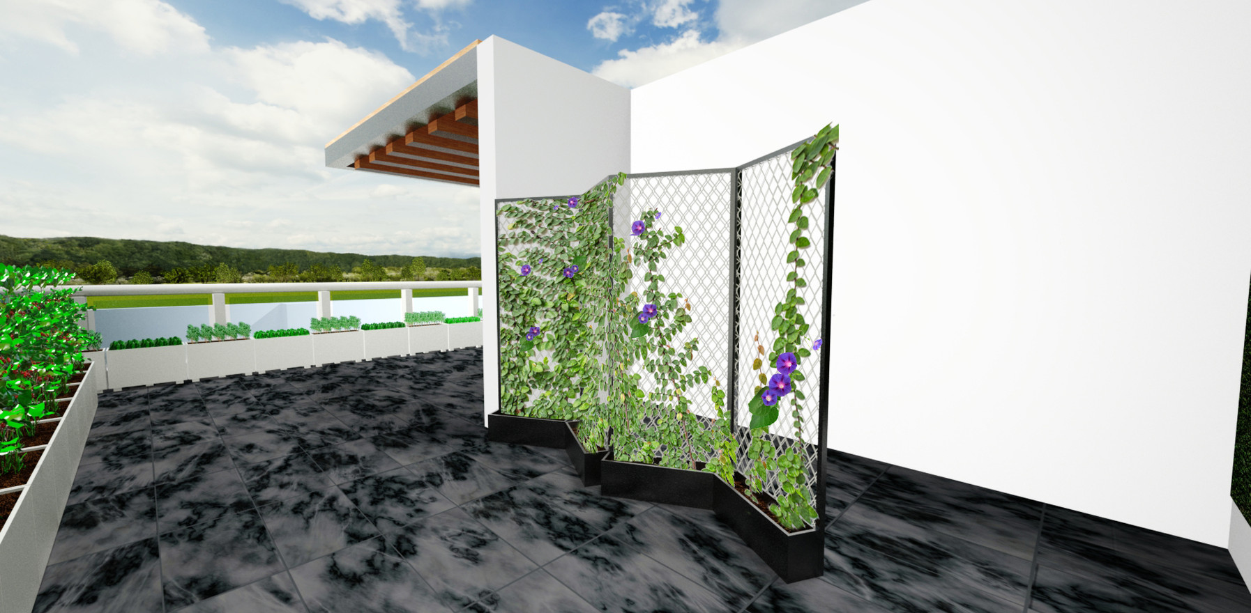 Biombo vegetal