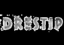 DRESTIP Logo