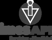 Imesapi-Logo copia.png