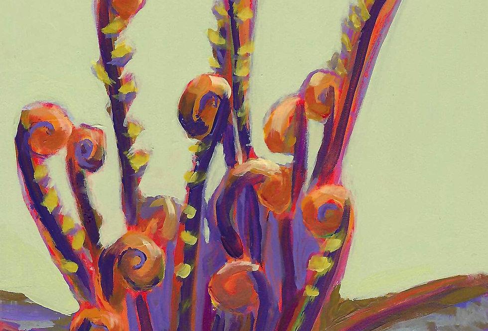 Fuzzy Fiddlehead Ferns